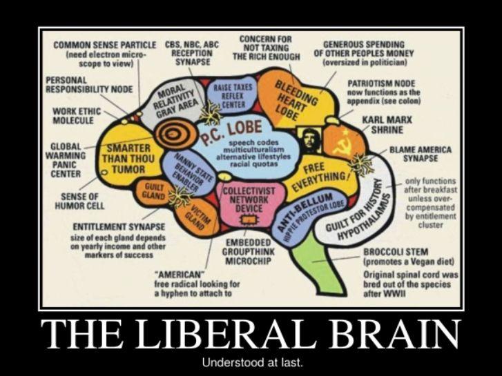 lib brain
